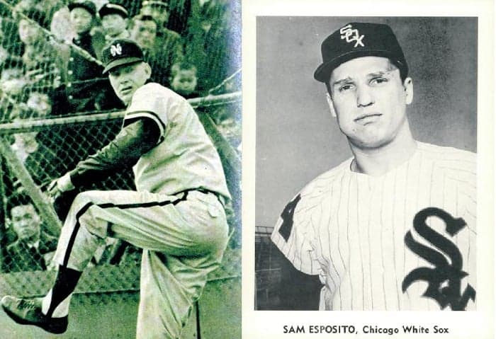 In memoriam: The White Sox' other losses in 2018